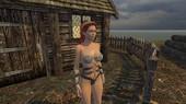 FlyRenders - Vikings Daughter Version 0.23.0 Win/Mac