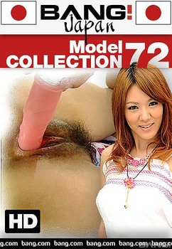 Model Collection 72 (2017)