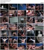 The Hand of Pleasure (1971)